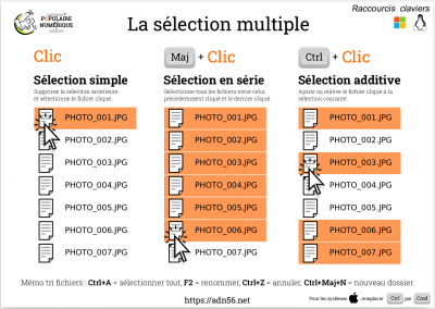 Selection multiple.png